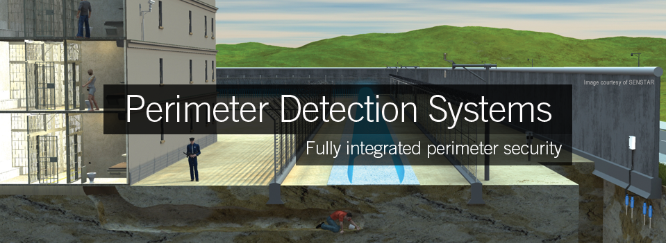 Perimeter Intrusion and Detection